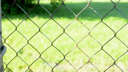 metal fence with a lock - in the background of grass