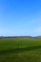 marks of wheels in green field, blue sky, spring