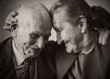Cute 80 plus year old married couple posing for a portrait - 65765709