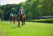 Rennpferde mit Jockeys auf der Zielgeraden - 65765768