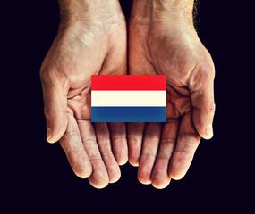 netherlands flag in hand