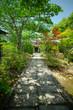 japanese garden, view of Japanese garden, Kyoto, Japan