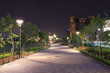 beautiful garden walkway with lamps at night - 65770308