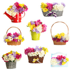 Collage of beautiful  freesias, isolated on white