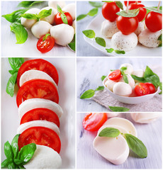 Collage of cheese mozzarella with tomatoes isolated on white