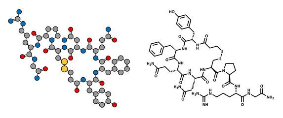 Desmopressin drug, synthetic replacement of vasopressin hormone