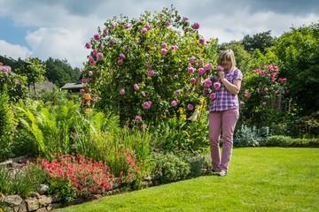 Frau mit Rosenstrauch im Garten