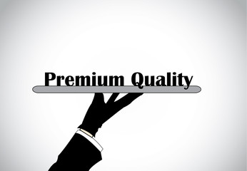 Profesional hand silhouette presenting premium quality text
