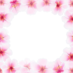 Cherry Flower Frame With Blur