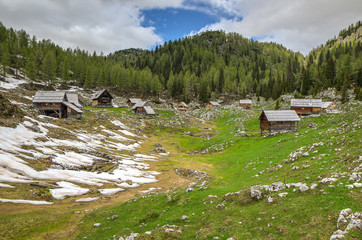 Dedno Polje Alpine Meadow in Bohinj