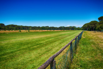 Beautiful park with horse race track