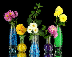 Beautiful flowers in vases with hydrogel isolated on black
