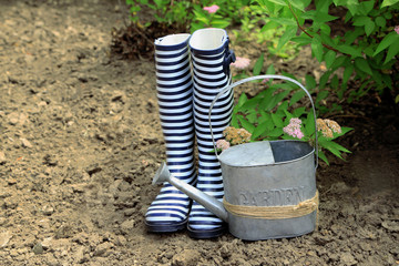 Rubber boots with watering can  near bush- gardening concept