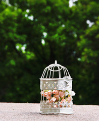 White vintage birdcage  with pastel roses inside,