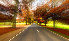 "Постер, картина, фотообои ""road speed"""