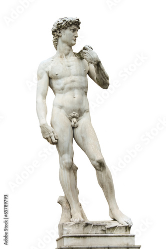 Statue of Michelangelo's David front of the museum Palazzo Vecch - 65789793