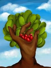 mano con mele rosse