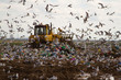Landfill rubbish bulldozers processing garbage