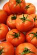 Tomato Pile Closeup