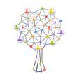 Human tree network