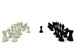 Black and white pawns making move
