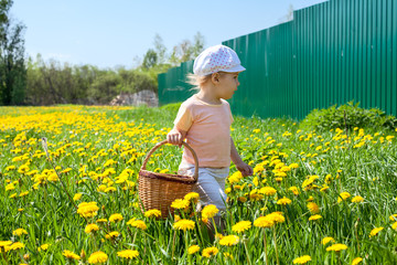 Small Caucasian girl walking on meadow with basket
