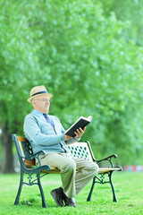 Mature man relaxing with a book in the park