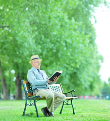 Senior gentleman reading a book in park
