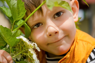 Boy Holding Plant Close to Face
