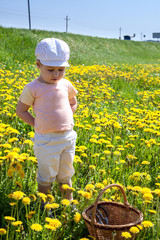 Child with basket standing in summer green and yellow field