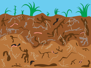 Illustration of earthworms underground background
