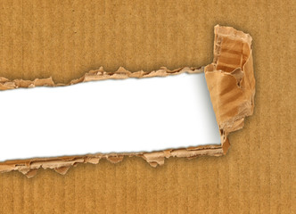 cartone strappato