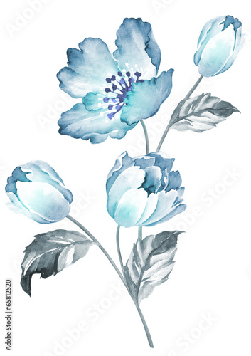 watercolor illustration flowers in simple background - 65812520