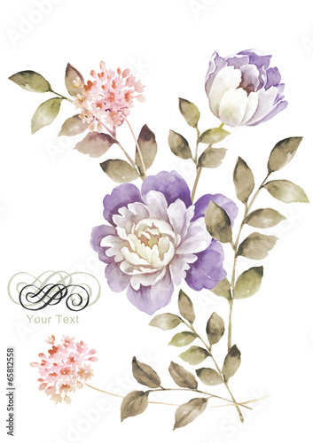 watercolor illustration flowers in simple background - 65812558