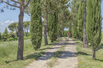 Biken in der Toskana