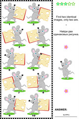 Visual puzzle - find two identical images - mice and cheese