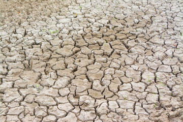 dry cracked earth as textured background