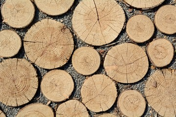 Wegebelag aus Holzpflaster