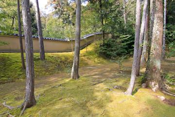 landscape area at Kinkakuji Temple