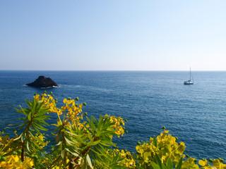 The sea at Monterosso al Mare