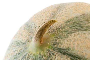 external of melon