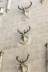 Three heads of deer on the wall building