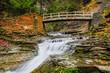 Rustic Bridge Over Stream - 65822300