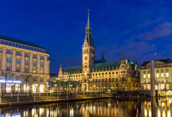 View of Hamburg city hall - Germany