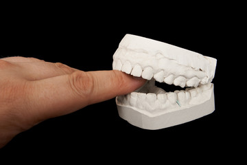Plaster jaw biting human finger.