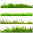 Verschiedene Gras Banner