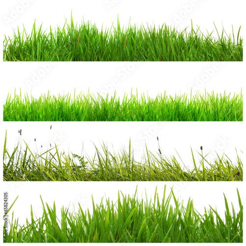 canvas print picture Verschiedene Gras Banner