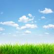 canvas print picture - Sommerliche Landschaft
