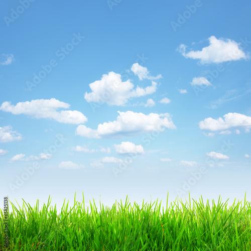 canvas print picture Sommerliche Landschaft