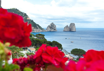 Red geraniums with Faraglioni in background, Capri island.